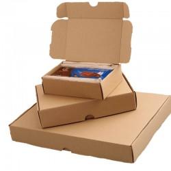 Maxibrief Karton 350x250x50